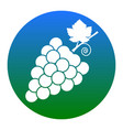 grapes sign white icon in vector image vector image