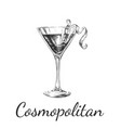 hand drawn sketch cosmopolitan cocktail drinks vector image vector image