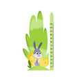 wall meter with eared hare sticker for measuring vector image vector image