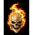 Burning skull on black background vector image