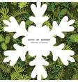 evergreen christmas tree Christmas snowflake vector image vector image