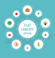 flat icons bean alligator pear litchi and other vector image vector image