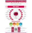 food infographics poster red wine alcohol drink vector image vector image