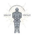 Knight in armor vector image vector image