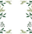 leaves frame white background vector image