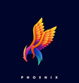 phoenix color template vector image