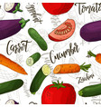 seamless pattern with vegetables cucumber vector image