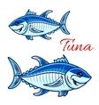 Smiling cartoon bluefin tunas for fishing design vector image vector image
