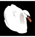 white swan on the black background vector image vector image