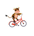 bull wearing chamomile wreath riding a bike vector image vector image