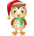 cartoon cute christmas owl vector image vector image