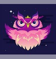 decorative owl in vibrant color on a purple vector image