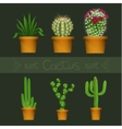 Different cactus types in flower pot realistic vector image