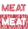 Meat Letters from texture of fresh meat Raw red vector image vector image