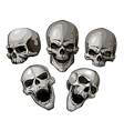 Skulls 4 vector | Price: 3 Credits (USD $3)