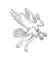 skvader flying doodle vector image vector image