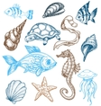 marine life drawing