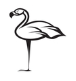 flamingo1 vector image