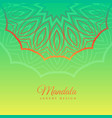 green background with mandala decoration vector image