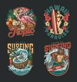 hawaii surfing vintage labels vector image