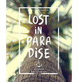 lost palm vector image vector image