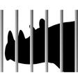 Rhinoceros in zoo vector image vector image
