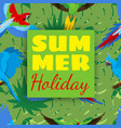 summer holiday cards with tropical plants and vector image