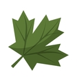 maple leaf green sign canadian vector image