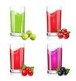 glass of berries juice cranberries red currant vector image