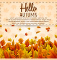 hello autumn banner template vector image vector image