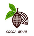 icon cocoa beans with green leaves vector image