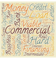 Commercial Hard Money Loans Three Business vector image vector image
