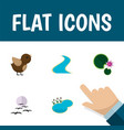 Flat icon bio set of tributary bird gull and vector image