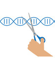 manual genetic engineering vector image vector image