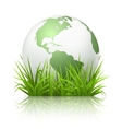 Globe on grass vector image