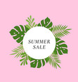 monstera palm tropical leaves summer sale card vector image