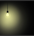 retro light bulb in dark transparent vector image