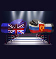 boxing gloves with print of national flags of vector image