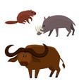 cute beaver buffalo bull babirusa in vector image vector image