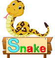 cute snake vector image vector image