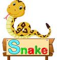 cute snake vector image