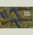 graphic colorful modern automatic russian rifle vector image vector image