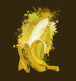 half-peeled banana and abstract juice splashes vector image vector image