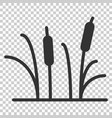 reeds grass icon in flat style bulrush swamp on vector image