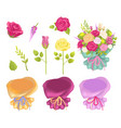 set of flowers and wrapping vector image vector image