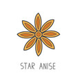star anise line cooking vector image