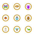 types of insects icons set cartoon style vector image vector image