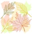 Autumn leaf set vector image