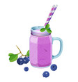 blueberry smoothie in glass jar with handle two vector image vector image