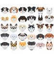 dogs with respirator set vector image vector image